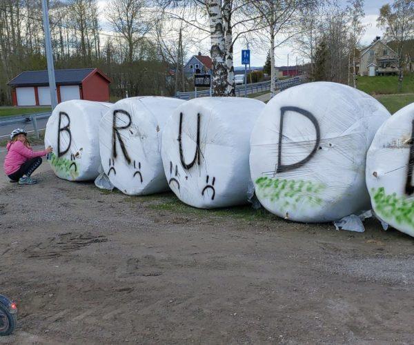 Alt mannskap kalt inn hos Våle Bondelag for dekorering av runndballer.
